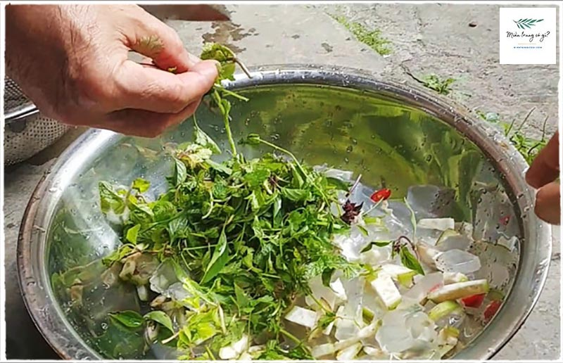 cách trộn gỏi sứa