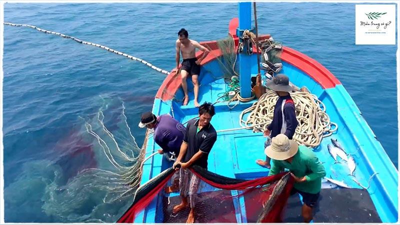 ngư dân đảo hòn khô
